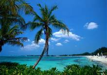 Picture of Bahamas