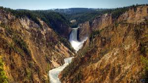 Picture of Yellowstone Falls
